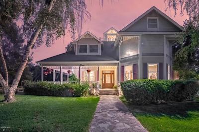 Ojai Single Family Home For Sale: 3860 Grand Avenue