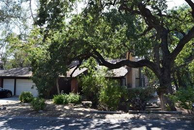 Newbury Park Single Family Home For Sale: 505 Citation Way