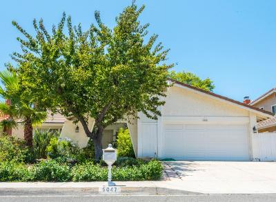 Agoura Hills Single Family Home For Sale: 6047 Calmfield Avenue