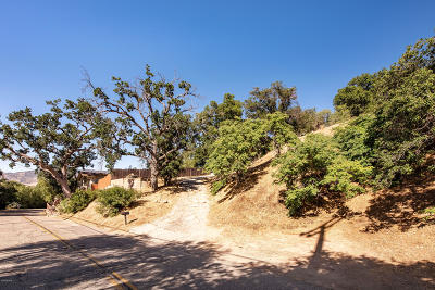 Ventura County Residential Lots & Land For Sale: 1192 Black Canyon Road