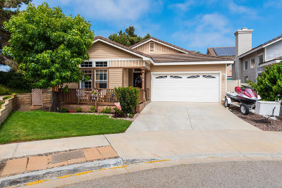 Ventura Single Family Home For Sale: 542 Schuman Place