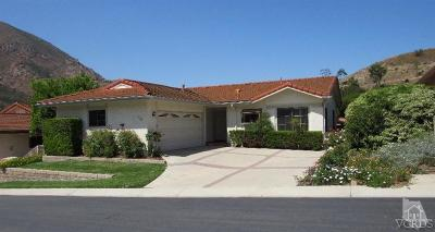 Camarillo Rental For Rent: 1149 Belleza Street