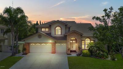 Oxnard Single Family Home For Sale: 2220 Nassau Drive