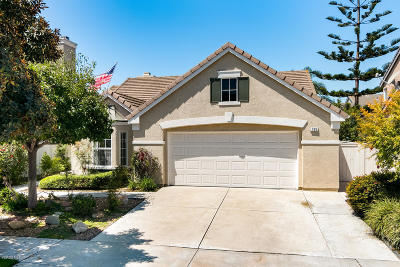 Oxnard Single Family Home For Sale: 709 Olivia Drive