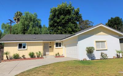 Santa Paula Single Family Home For Sale: 126 Moultrie Place