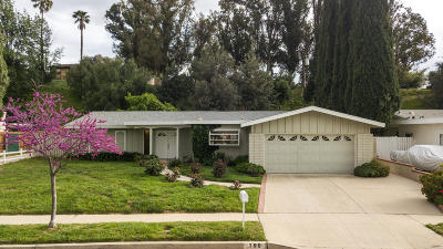 Simi Valley Single Family Home For Sale: 790 Catlin Street