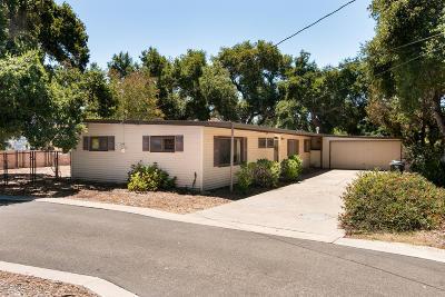 Ojai Single Family Home For Sale: 2144 Los Encinos Road