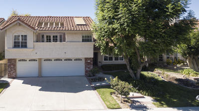 Thousand Oaks Single Family Home For Sale: 3367 Montagne Way