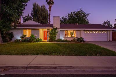 Ojai Single Family Home For Sale: 1113 Sunnyglenn Avenue