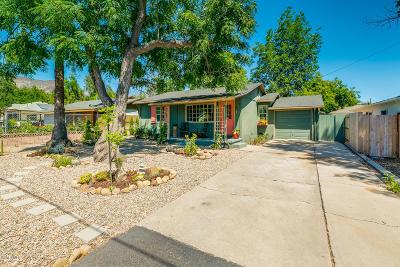 Ojai Single Family Home For Sale: 302 Bald Street