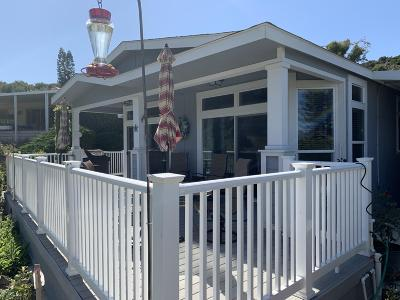 Camarillo Single Family Home For Sale: 5 Margarita Avenue #43