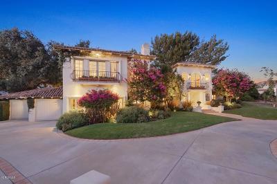 Westlake Village Single Family Home For Sale: 5623 S Rim Street