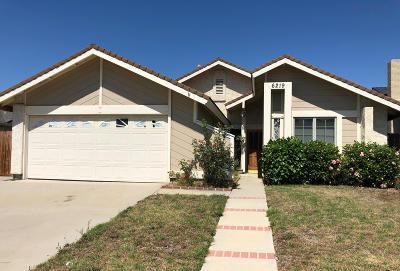 Camarillo Single Family Home For Sale: 6219 Calle Bodega