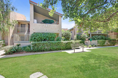 Thousand Oaks Condo/Townhouse For Sale: 751 Birchpark Circle #101