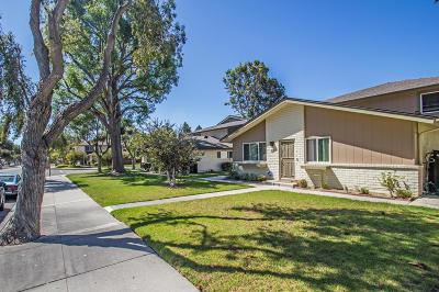 Ventura County Condo/Townhouse For Sale: 1245 Saratoga Avenue