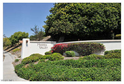 Ventura Single Family Home For Sale: 681 Viewcrest Drive