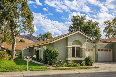 Camarillo Single Family Home For Sale: 41034 Village 41