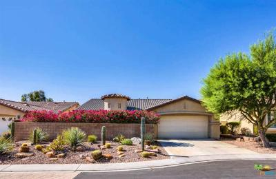 Palm Springs Single Family Home Contingent: 1141 Vista Sol