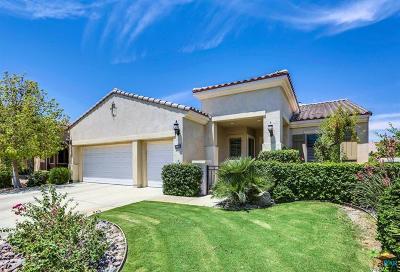Sun City Shadow Hills Single Family Home For Sale: 81164 Avenida Castelar