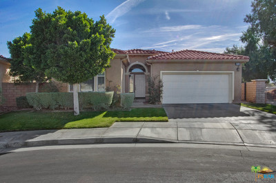 Palm Springs Single Family Home For Sale: 3724 Aloe Grove Way