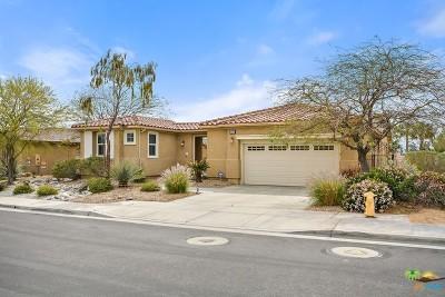 Palm Springs Single Family Home Contingent: 1805 Savanna Way