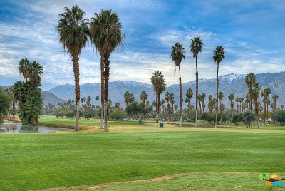 Palm Springs Condo/Townhouse Contingent: 500 South Farrell Drive #D30