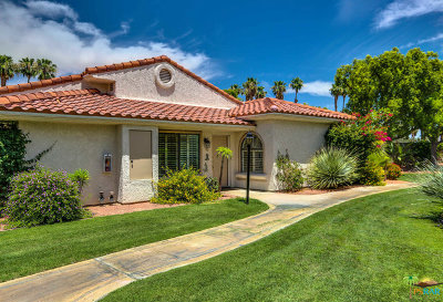Palm Springs Condo/Townhouse Contingent: 505 South Farrell Drive #Q101