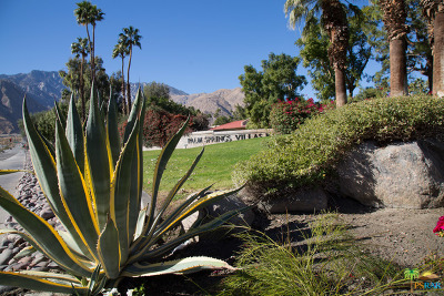 Palm Springs Condo/Townhouse For Sale: 2860 North Los Felices Road #104