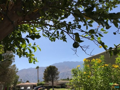 Palm Springs CA Condo/Townhouse For Sale: $139,900