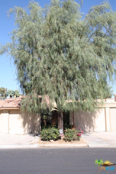 Indio Condo/Townhouse For Sale: 82182 Bergman Drive