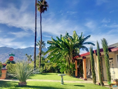 Palm Springs Single Family Home For Sale: 4120 E Calle San Antonio