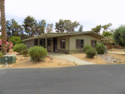 Single Family Home For Sale: 1010 Palm Canyon # 327 #327