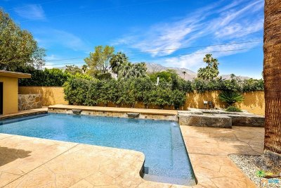 Palm Springs Single Family Home For Sale: 365 N Orchid Tree Lane