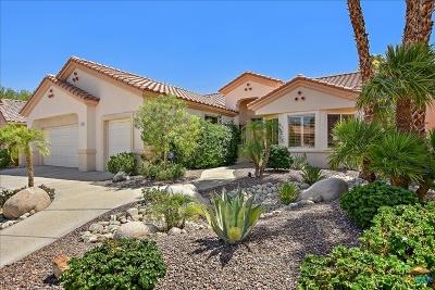 Sun City Single Family Home Sold: 39124 Sandy Drive