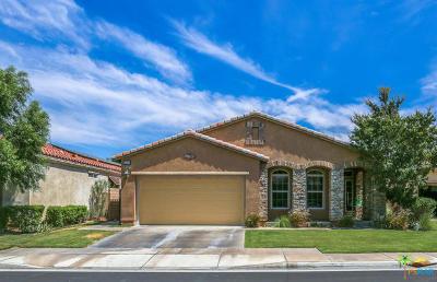 Palm Springs Single Family Home Contingent: 3760 Aloe Grove Way