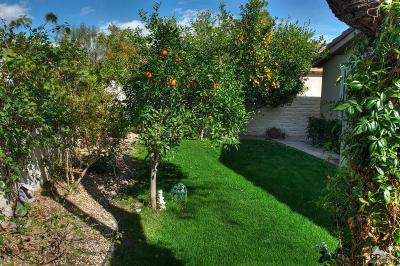 Sun City Shadow Hills Single Family Home For Sale: 40815 Calle Santa Cruz
