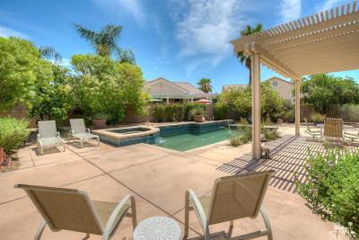 Sun City Single Family Home Contingent: 78230 Larbrook Drive