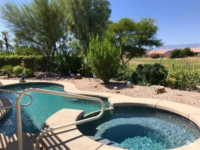 Sun City Single Family Home For Sale: 37309 Pineknoll Avenue