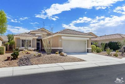 Palm Desert Single Family Home Contingent: 78799 Palm Tree Avenue