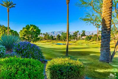 Palm Desert Single Family Home Contingent: 39611 Manorgate Road