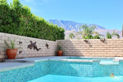 Palm Springs Single Family Home Contingent: 1597 East Racquet Club Road