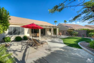 Palm Desert Single Family Home Contingent: 35337 Flute Avenue
