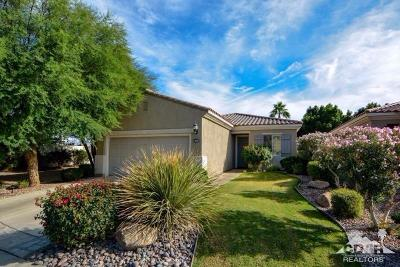 Sun City Shadow Hills Single Family Home For Sale: 80815 Camino Santa Paula