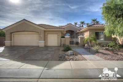 Sun City Single Family Home For Sale: 35653 Rosemont Drive