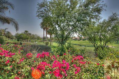 Palm Desert Single Family Home For Sale: 716 Elk Clover Circle