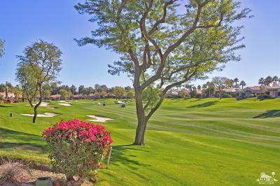 Palm Desert Condo/Townhouse For Sale: 425 Desert Holly Drive