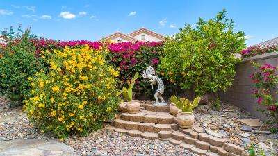 Palm Desert Single Family Home For Sale: 34968 Staccato Street