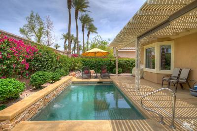 Single Family Home Sold: 35813 Palomino Way