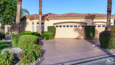 Palm Desert Single Family Home Contingent: 892 Mesa Grande Drive