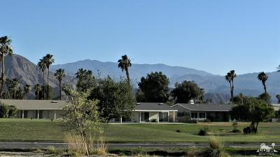 Palm Desert Country Single Family Home For Sale: 76795 New York Avenue